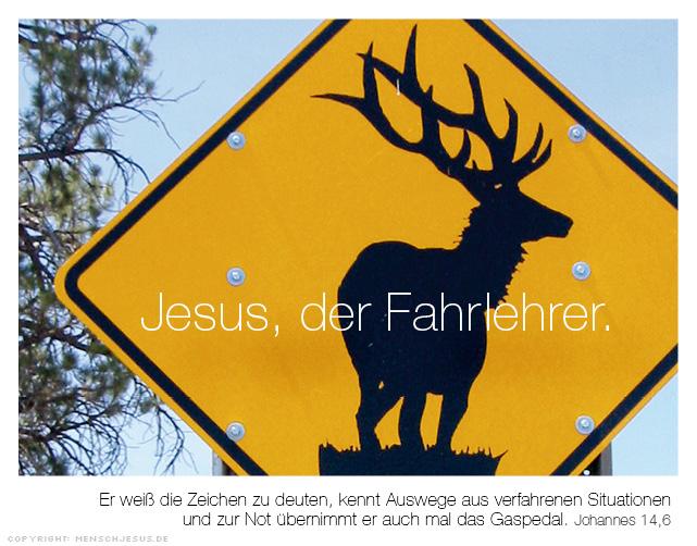 Jesus, der Fahrlehrer. Johannes 14,6